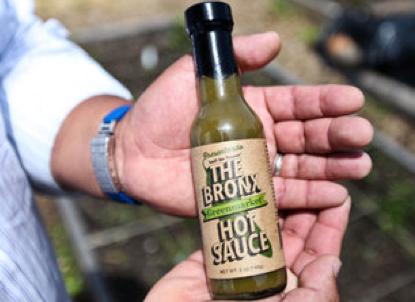 Bronx Hot Sauce